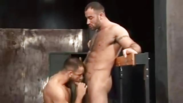 video de cul homo couple cherche amant
