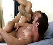 Plusieurs scènes d'anal sexy
