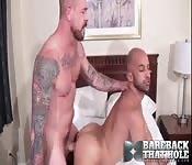 Brawny hunk fucking his sexy lover hard