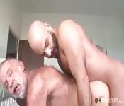 Sexy Bartträger fickt alten Mann in den Arsch