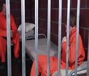 Prisonniers excités baisent