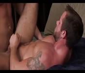 Modelos gais en la cama