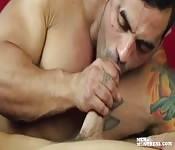 Mec musclé suce la queue de son amant