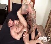 jest shemale porno gejem