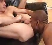 Dünner Kerl bei gemischtrassigem Zungenfick