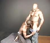 Negro en vaqueros recibe sexo oral intenso