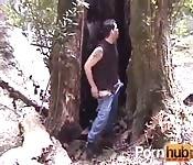 Aggirarsi per i boschi