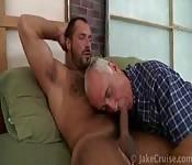 Behaarter reifer Hengst bekommt von einem alten Mann einen geblasen