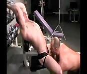 Muskelprotz bekommt versautem Hengst einen geblasen
