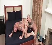 Stallone sexy e dotato scopa il suo amante con la lingua