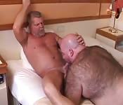Gordo peludo devora el cipote de un desconocido