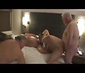 Tres osos rellenitos comparten una cama