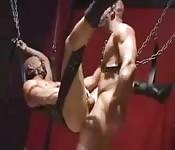 Handsome sex slave enjoying great anal sex