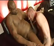 Tattooed hunk sucking a huge black dick