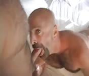 Maduritos calientes mamando rabos en la cama