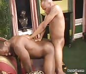 Bearded black guy getting banged in the ass