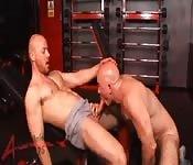 Bald gay hunk sucking his boyfriend cock