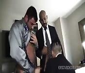 Trois hommes d'affaires barbus