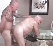 Grand pères grassouillets