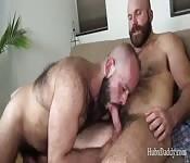 Réseau de sexe gay