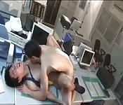 Guapos amantes gozan en la oficina