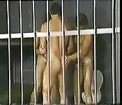 Uno stallone alto e moro scopa in carcere