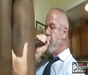 Papa barbu se fait baiser par un minet d'ébène
