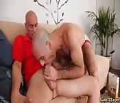 A couple of bald man