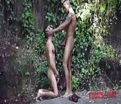 Polvazo gay en el bosque