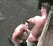 Um policial inspeciona um caminhão e ao caminhoneiro