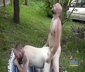 Gay sex in the farm