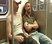 Typ macht im Zug mit einem heißen Australier rum