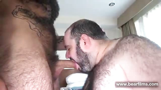 Nasty bears gay fuck