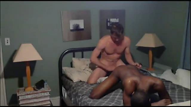 gay 84 cul juteux