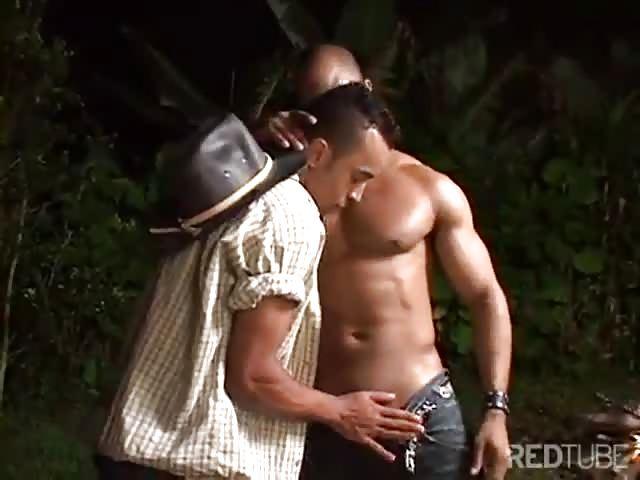 Brokeback montagne porno gay adolescent porno séduction