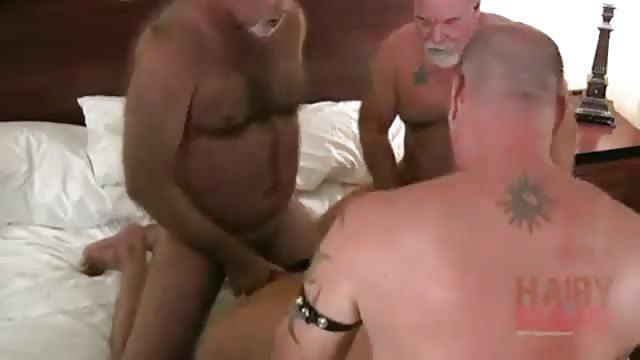 pichaloca com osos gays
